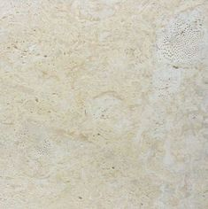 Atlantic Shell Stone - Coquina Stone & Coral Stone Tiles by A&PTrading Terrace Tiles, Outdoor Living Rooms, Coral Stone, Stone Flooring, Stone Tiles, Stock Pictures, Roots, Shells, House Ideas