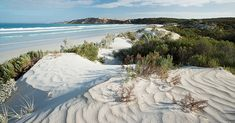 Get swept away by the Eyre Peninsula, South Australia