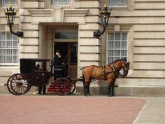 Horse & Carriage at #Buckingham #Palace #London