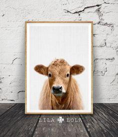 Koe Print kwekerij boerderij dieren Wall Art, afdrukbare kleurenfoto, digitale Download, grote Poster, Decor van de boerderij, moderne minimalistische