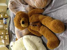 "My favorite giant teddy bear. Joyfay 63"" teddy bear."