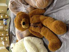 """My favorite giant teddy bear. Joyfay 63"""" teddy bear."""