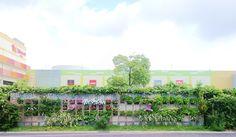 ■ Milk crate Tile type Vertical garden