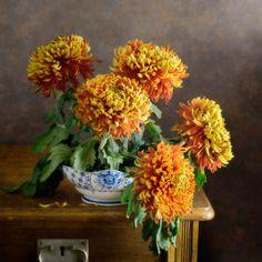'Rote Chrysantheme' von Nikolay Panov bei artflakes.com als Poster oder Kunstdruck $14.38 https://www.artflakes.com/de/products/rote-chrysantheme Floral Stilleben mit Bouquet von gelben roten Chrysantheme in weißen blauen Schale im japanischen Stil von Tageslicht beleuchtet