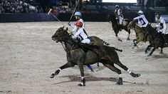 Gladiator Polotm is a professional arena polo league that combines the world's best polo players with modified rules that keep the play fast.  The event is played in a ring with all weather footing that is approximately 300′ x 150′ which is 1/10 the size of a typical grass polo field.