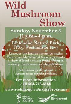 Wild Mushroom Show: Richmond Nature Park - Sun, 3 Nov 2013