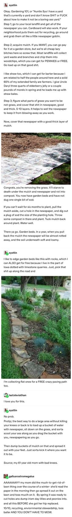 The More You Know, Good To Know, Dream Garden, Home And Garden, Patio, Backyard, Life Advice, The Ranch, Cottage
