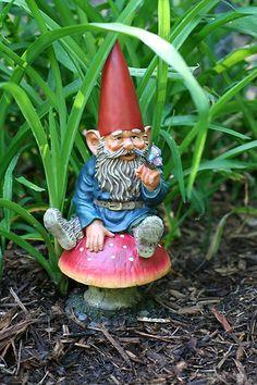Garden Gnome  -- watches over the garden