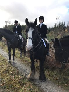 Veronica riding Eastwood for her first hunt in Ireland. Cross Country Jumps, Beach Rides, Tally Ho, Horses For Sale, Veronica, Equestrian, Irish, Ireland, Hunting