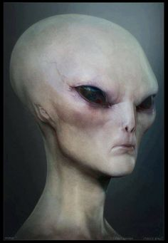 GREY...........PARTAGE OF UFO KRUHY V OBILI..........ON FACEBOOK...............