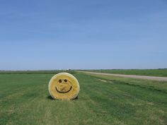 smiling round hay bale