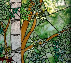 White birch and maple tree Stained Glass Flowers, Stained Glass Art, Mosaic Glass, Tree Leaves, Plant Leaves, Maple Leaves, Maple Tree, Stained Glass Projects, Stained Glass Patterns