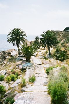 http://laetifican-t.tumblr.com/post/40292191462/naturae-sunken-city
