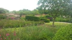 the walled garden at Bury Court designed by Piet Oudolf