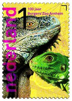 100 jaar Burgers' Zoo  Groene leguaan      http://collectclub.postnl.nl/pages/detail/s1/10220000001790-2-21010000000080.aspx
