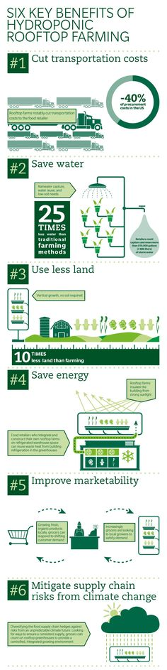 Rooftop_farming_infographic_crp.jpg 1.334×5.334 pixels
