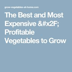 The Best and Most Expensive / Profitable Vegetables to Grow