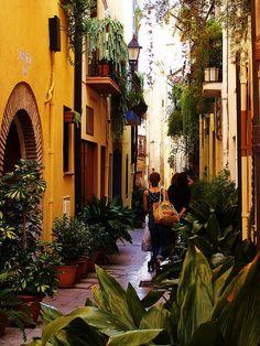 Cambrils Tarragona