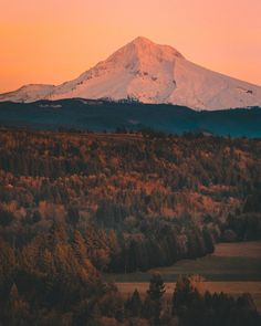 "nicholaspeterwilson: ""Magic Mount Hood. by Nicholas Peter Wilson """
