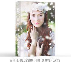 White Blossom Photo Overlays – Kimla Designs