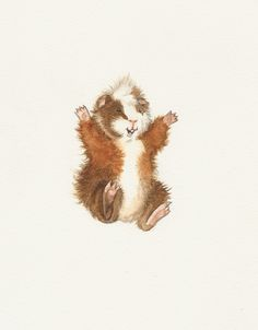Mr. Melville Fats is jumping for joy - [custom watercolor guinea pig painting made in memory for a tattoo design for Kristen]