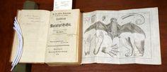 Handbuch der Naturgeschichte (Handbook of Natural History), by Johann Friedrich Blumenbach, 1779, at Smithsonian Libraries' rare books collections. Credit: Micaela Jemison