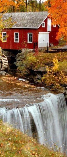 Autumn, Morningstar Mill, South Carolina.