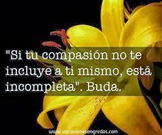 ¿Y tú? ¿Eres compasivo o demasiado duro contigo mismo? #felizmesdejulio #compasión