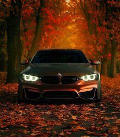 BMW ///4 #GifGooDs