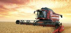В Южной Осетии собирают урожай зерновых