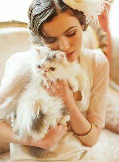 persian cat #ruche bridal