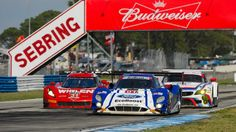It's back to the vineyard before relative sprint race at Long Beach for Ford Prototype driver Scott Pruett, Dramas, Sprint Race, Fall Shorts, Le Mans, Racing, The Unit, Goals, Blog