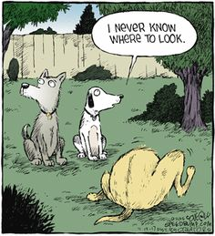 Today on Speed Bump - Comics by Dave Coverly Dog Jokes, Cartoon Jokes, Animal Jokes, Cartoon Dog, Cartoon Pics, Funny Animals, Dog Humor, Dog Cartoons, Dog Funnies