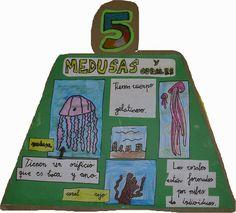 El Monstruito en Monteagudo: Proyecto: El caracol y los invertebrados
