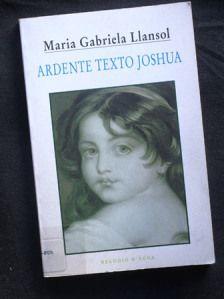 """Quando obscurecia, Teresa refulgia. """"Mutine"""", dizia-lhe. O sombrio dava-lhe um tom peculiar de lucidez, como a muitos de nós, mas nela era uma espécie de crueldade infantil indestrutível. """"No túnel, vê-se"""", dizia. Não era uma crítica ao texto que se desejava amado. Uma maneira apenas de lhe dizer, num falso tom de infância, que o que decide a vida não se lê."""