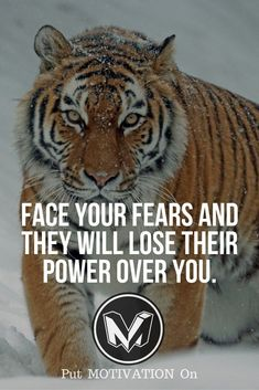 Quotes for Motivation and Inspiration   QUOTATION – Image :    As the quote says – Description  60 Motivational and Inspirational Quotes for Successful Life – PutMotivationOn