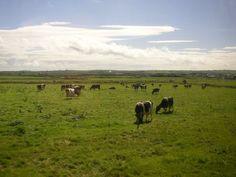 Fotografie: Campana Laura - Paesaggio - Lonely Planet Italia #Irlanda