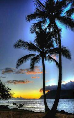 Beautiful Nature Pictures, Beautiful Nature Wallpaper, Nature Photos, Beautiful Landscape Photography, Beautiful Landscapes, Nature Photography, Beautiful Sunrise, Beautiful Beaches, Sunset Pictures