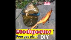 How to make Biogas plant at home Free Plants, Plant Design, The Creator, Projects, How To Make, Diy, Log Projects, Blue Prints, Bricolage