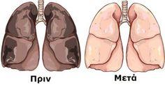 Η νικοτίνη χρειάζεται 48-72 ώρες για να αποβληθεί από τον οργανισμό. Όμως ένα συστατικό, έρχεται να αντιστρέψει τις βλαβερές επιδράσεις της νικοτίνης, απομ
