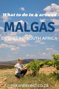 Visiting the Overberg? Find out things to do in Malgas, from river cruises, river rafting and wine tasting to crossing the Breede River on the Malgas pont (Malgas ferry), fishing, horse riding and bird watching. As for your Malgas accommodation, choose from the Malagas Hotel or hire a houseboat. In the greater Malgas area, visit Swellendam, the De Hoop Nature Reserve, Bontebok National Park, Infanta and Witsand. Go whale-watching or explore some restaurants. Mountain Zebra, African Holidays, Stuff To Do, Things To Do, River Mouth, Slow Travel, Go Hiking, Whale Watching, Best Fishing