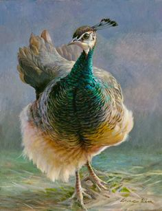 """""""Peahen"""" painting by Grace Kim Peacock And Peahen, Peacock Bird, Peacock Colors, Peacock Feathers, Pretty Birds, Beautiful Birds, Bird Pictures, Animal Pictures, Female Peacock"""