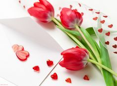 Sweet Love Pictures Is Wallpaper Free Download Downloads Hd Computer Wallpapers Red Tulips Flowers