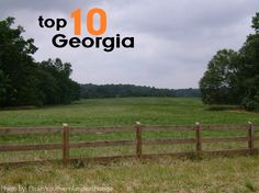 Top 10 Things for Families To Do in #Georgia via Trekaroo. Moving To Georgia, Georgia On My Mind, Georgia Beaches, Vacation Destinations, Vacation Spots, Vacation Trips, Vacation Ideas, Family Vacations, Mini Vacation