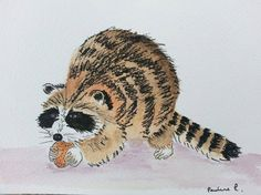 Raccoon in pen and watercolour on acid free watercolour paper. Painting art.