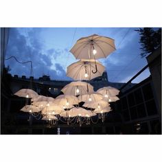Umbrella lights.