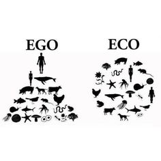 Humans do not rule the natural world. We are part of the natural world. Nature existed before humans did and will continue to do so when we are gone.