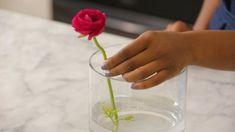 Floral Arrangements - Flower Frog DIY Hack