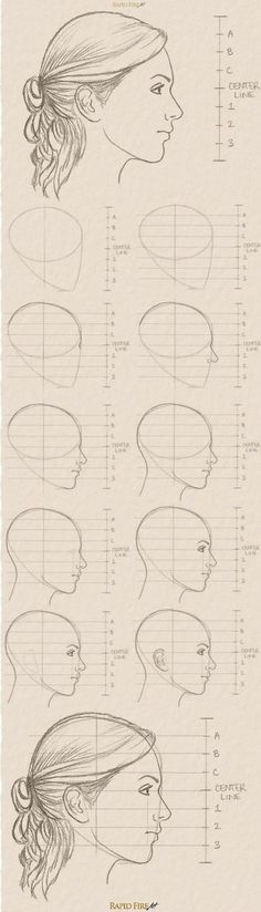 See the full tutorial and more examples here: http://rapidfireart.com/2017/03/08/how-to-draw-a-female-face-from-the-side/ How to Draw Female Faces from the Side #Femalefaces