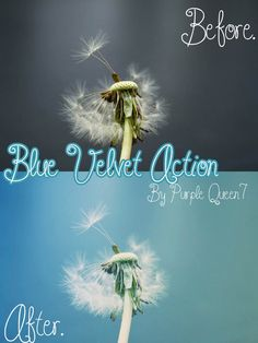 Free Photoshop actions for amazing photo effects